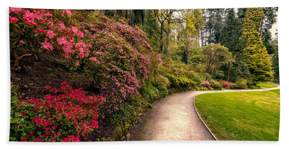 Cymru Hand Towel featuring the photograph Spring Footpath by Adrian Evans