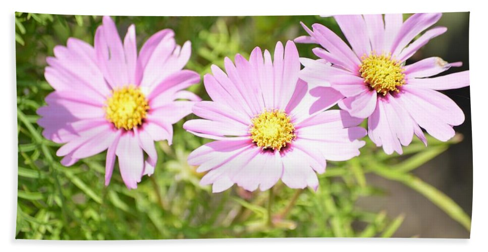 Blooming Flowers Facing Sun Bath Sheet featuring the photograph Spring Garden by Sonali Gangane