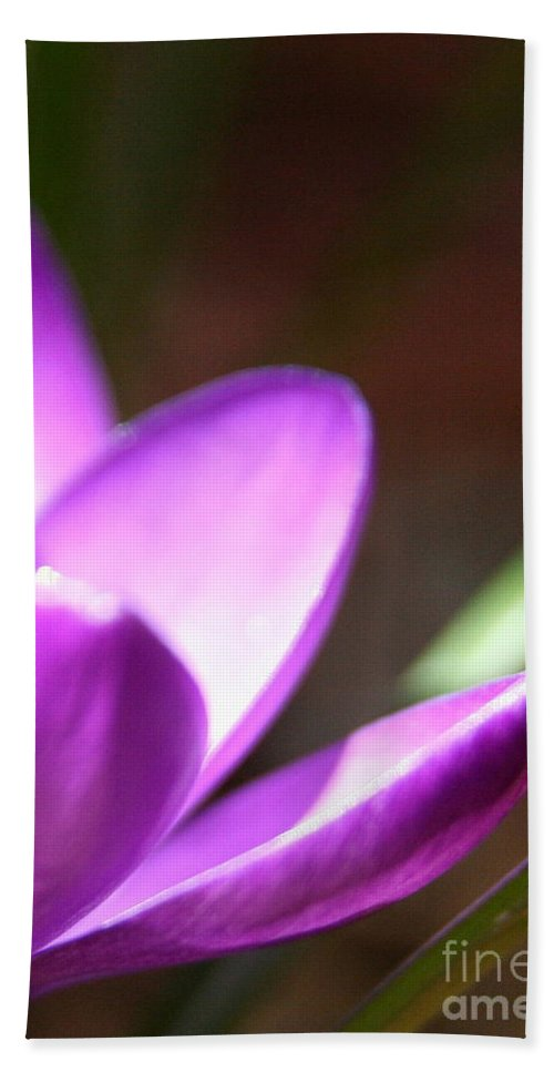 Crocus Bath Sheet featuring the photograph Spring Purple by Neal Eslinger