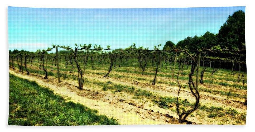 Grape Vines Bath Sheet featuring the photograph Spring Vineyard Ll by Michelle Calkins