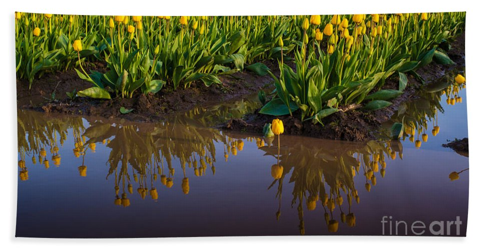 Flower Bath Sheet featuring the photograph Springs Reflection by Mike Reid