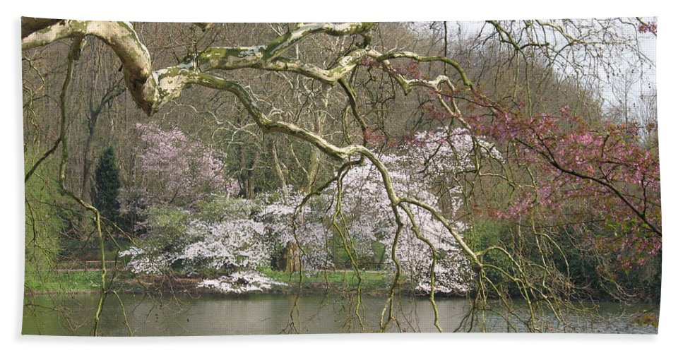 Pond Bath Sheet featuring the photograph Springtime At The Pond by Christiane Schulze Art And Photography