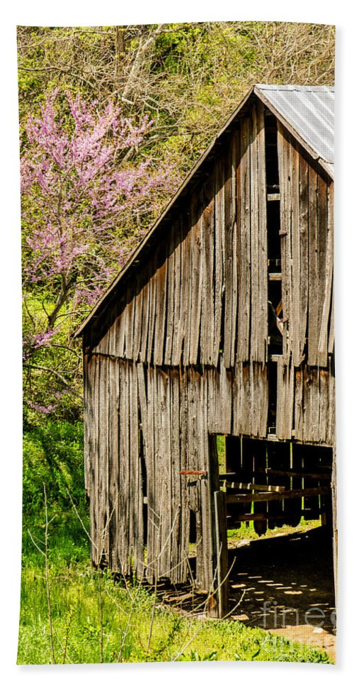Abandoned Hand Towel featuring the photograph Springtime In Kentucky by Mary Carol Story