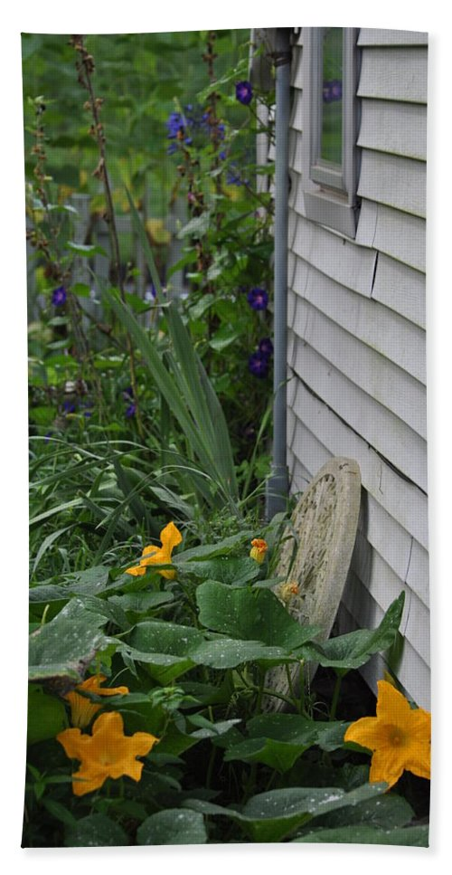 Squash Blossoms Hand Towel featuring the photograph Squash Blossoms by Sylvina Rollins