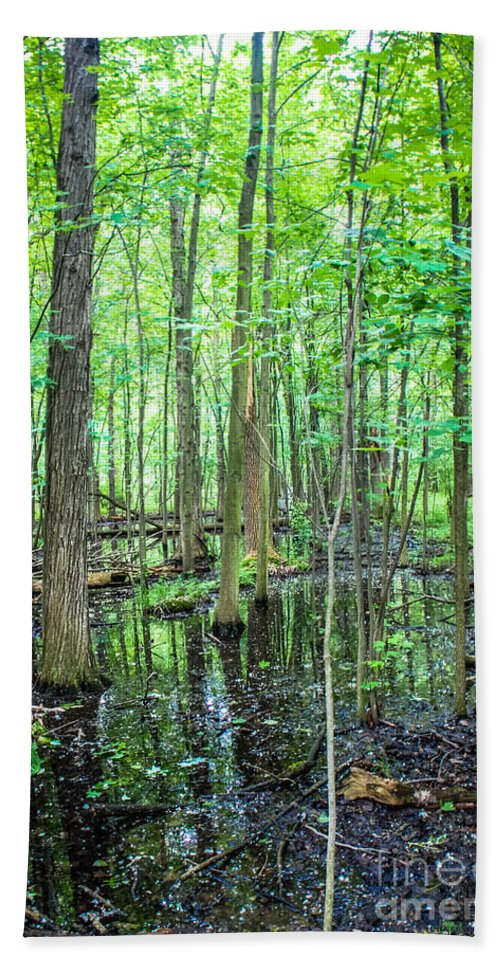 St. Clair Hand Towel featuring the photograph St. Clair Marsh by Grace Grogan