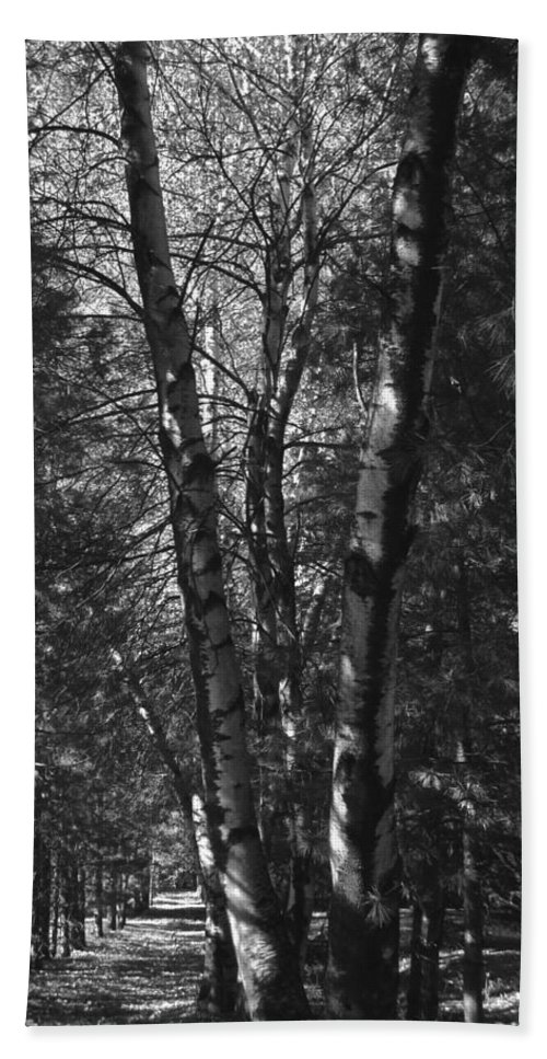 Black Y White Bath Sheet featuring the photograph St-denis Woods 2 by Mario MJ Perron