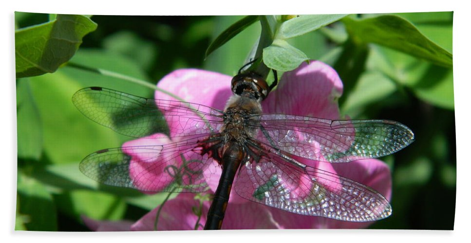 Dragonfly Hand Towel featuring the photograph Stained Glass Wings by Terri Waselchuk