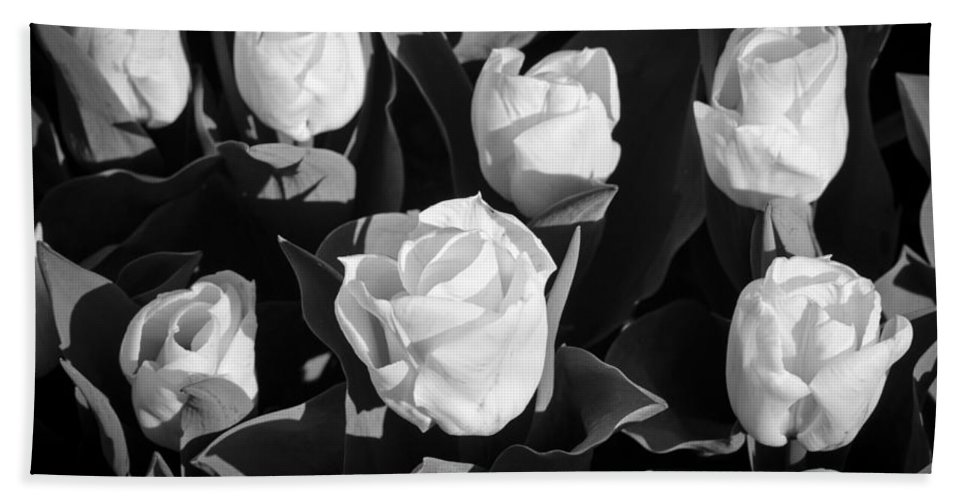 White Roses Bath Sheet featuring the photograph White Flowers by Crystal Wightman