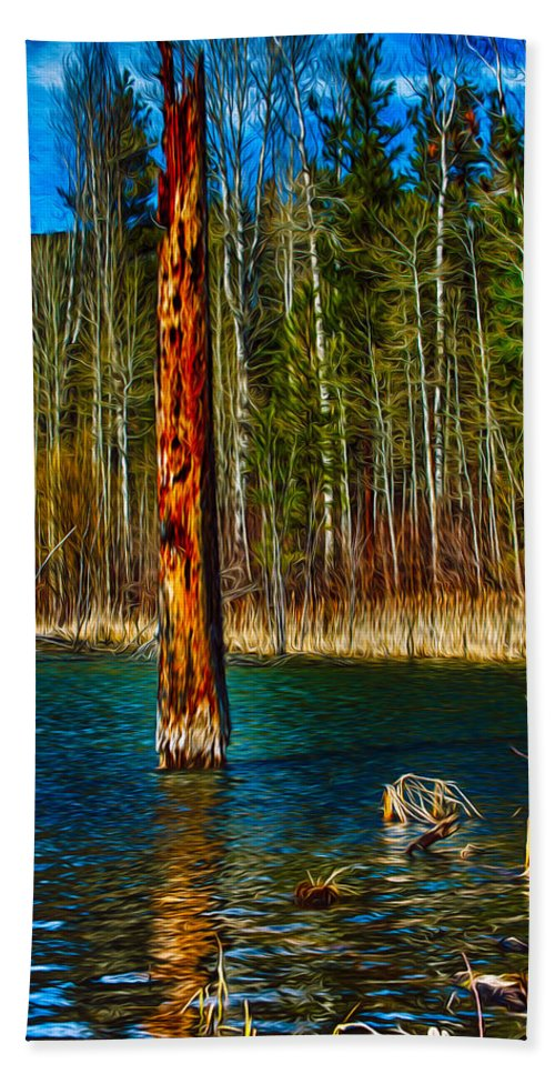 Beaver Bath Towel featuring the painting Standing Alone by Omaste Witkowski