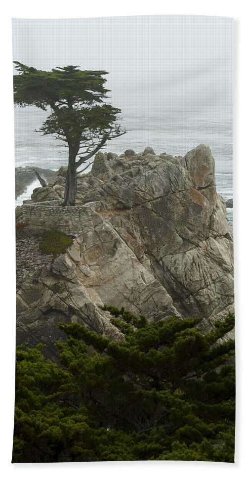 Monterey California Hand Towel featuring the photograph Standing Tall On The Rock by Robert Mollett