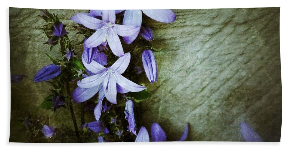 Star Flowers Hand Towel featuring the photograph Star Climbers by Joan-Violet Stretch