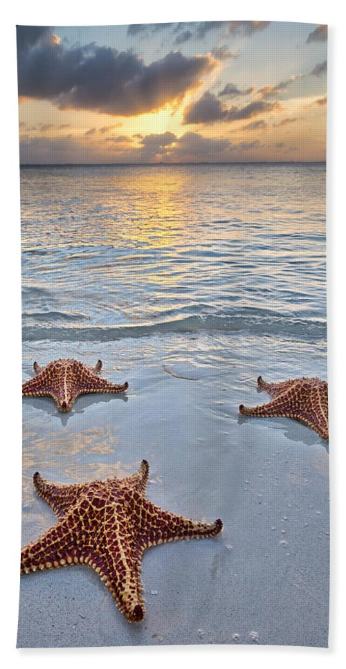 3scape Bath Towel featuring the photograph Starfish Beach Sunset by Adam Romanowicz