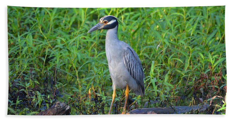 Heron Bath Sheet featuring the photograph Stately Heron by Deanna Cagle