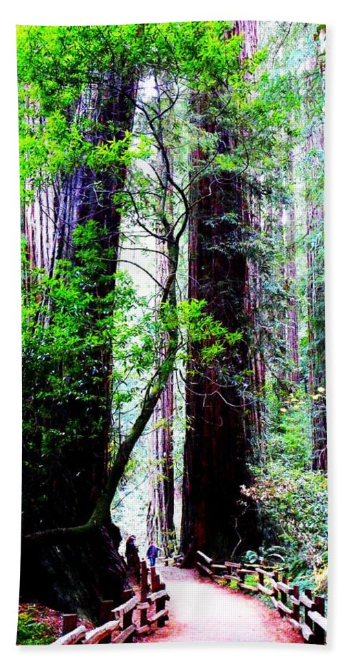 Muir Woods National Monument Bath Sheet featuring the photograph Stature by Cathleen Cario-Reece