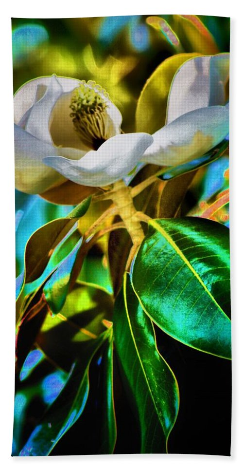 Flowers Bath Sheet featuring the photograph Steel Magnolia by Robert McCubbin