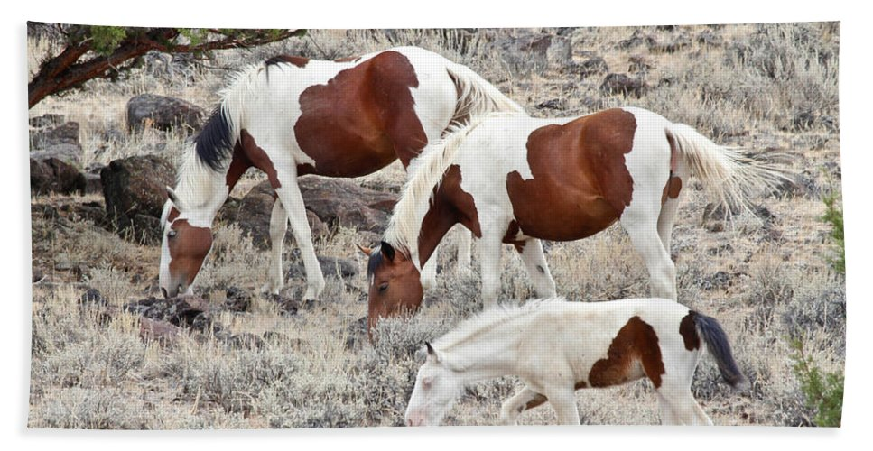 Horses Bath Sheet featuring the photograph Steens Wild Paints by Athena Mckinzie