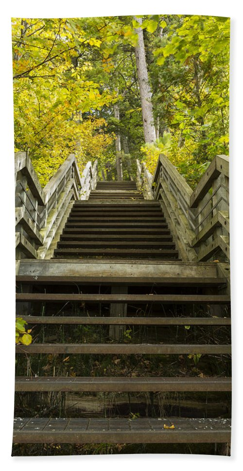Stairs Hand Towel featuring the photograph Step Trail In Woods 10 by John Brueske