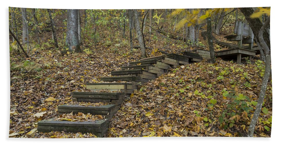 Fall Bath Sheet featuring the photograph Step Trail In Woods 12 by John Brueske
