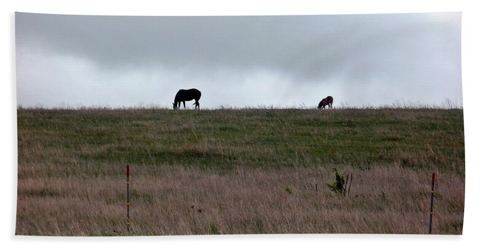 Horse Bath Sheet featuring the photograph Stillness by Christian Mattison