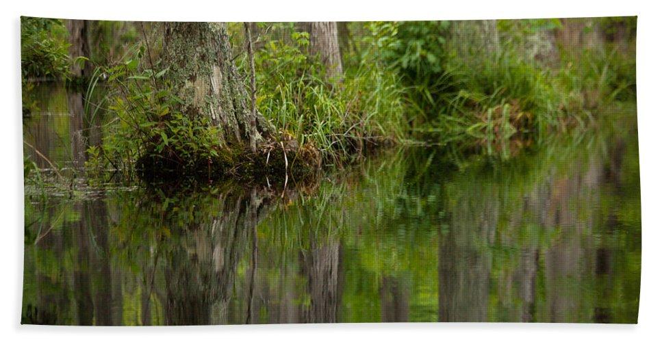 Stillness Swamp Bath Sheet featuring the photograph Stillness Swamp by Karol Livote