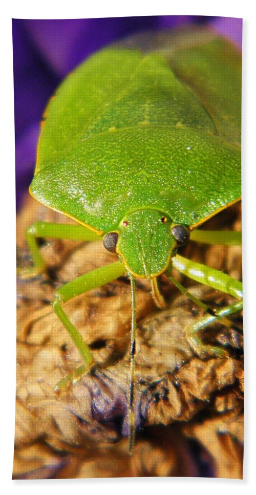 Bug Hand Towel featuring the photograph Stinky by Chris Berry
