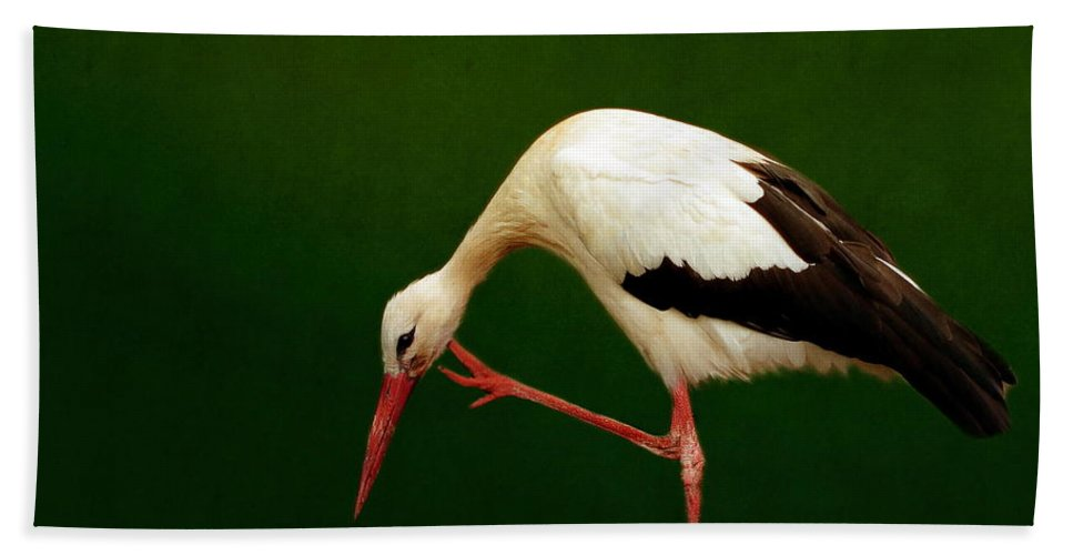 Stork Beak Bath Sheet featuring the photograph Stork by Heike Hultsch