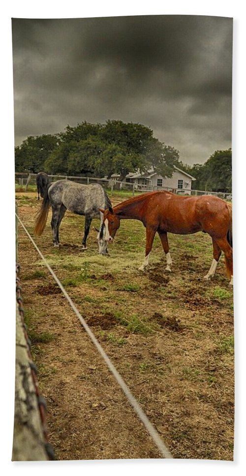 Horse Photograph Hand Towel featuring the photograph Stormy Skies by Kristina Deane