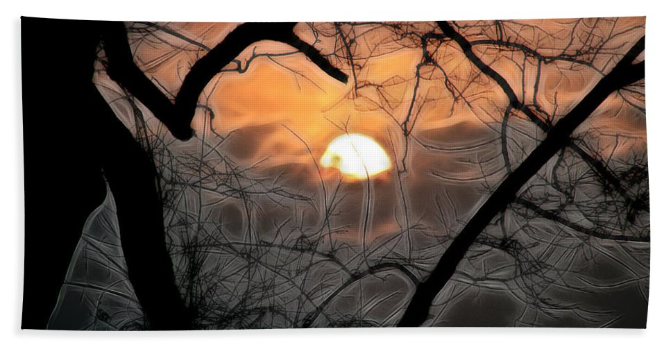 Trees Bath Sheet featuring the photograph Strange Morning by Ericamaxine Price