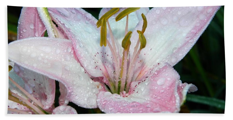 Lilies Hand Towel featuring the photograph Strawberry Ice Cream by Terri Waselchuk