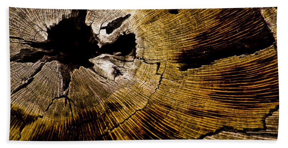Tree Rings Bath Sheet featuring the photograph Stump Art by Patrick Moore