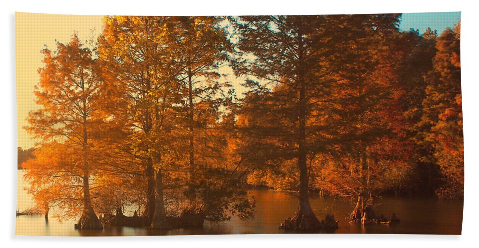 Fall Bath Sheet featuring the photograph Stumpy Sunset by Pete Federico
