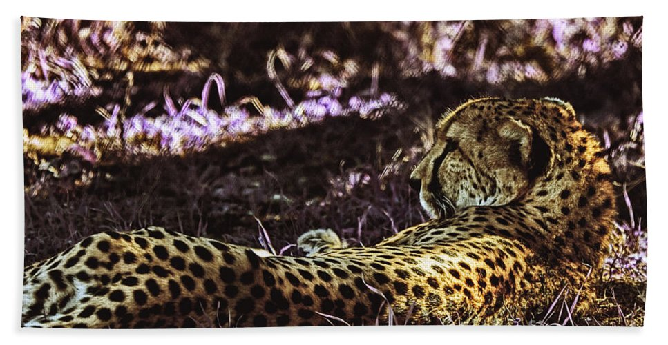 Cheetah Hand Towel featuring the photograph Styled Environment-the Modern Trendy Cheetah by Douglas Barnard