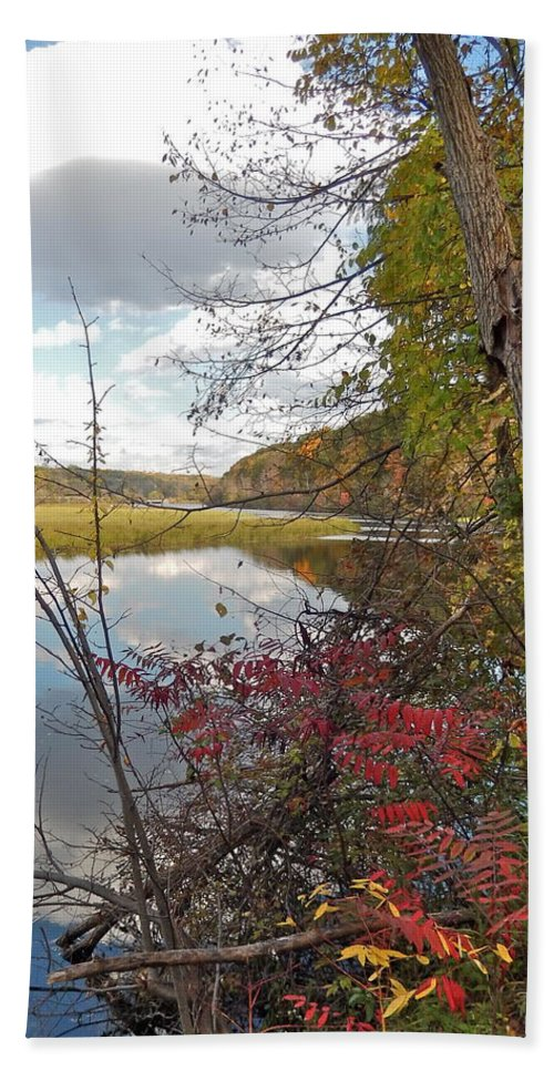 Huron River Bath Sheet featuring the photograph Sumac And Clouds by Susan Wyman