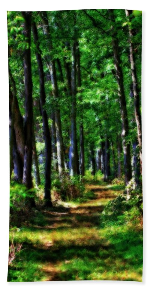 Summer Forest In Ohio Hand Towel featuring the photograph Summer Forest In Ohio by Dan Sproul