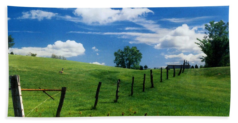 Summer Landscape Bath Sheet featuring the photograph Summer Landscape by Steve Karol