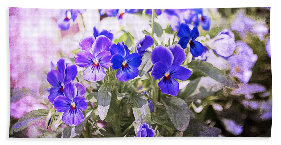 Summer Bath Sheet featuring the photograph Summer Pansies by Janice Pariza