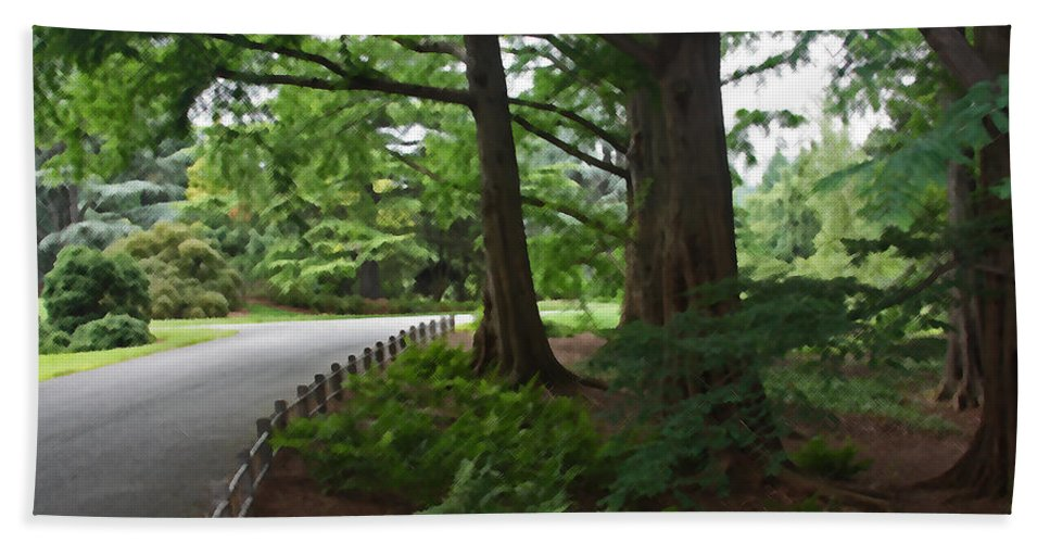 Trees Hand Towel featuring the photograph Summer Path by Carolyn Stagger Cokley