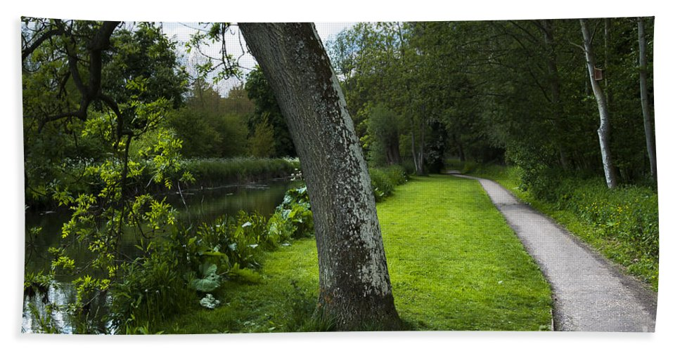 Beautiful Hand Towel featuring the photograph Summer Path by Svetlana Sewell