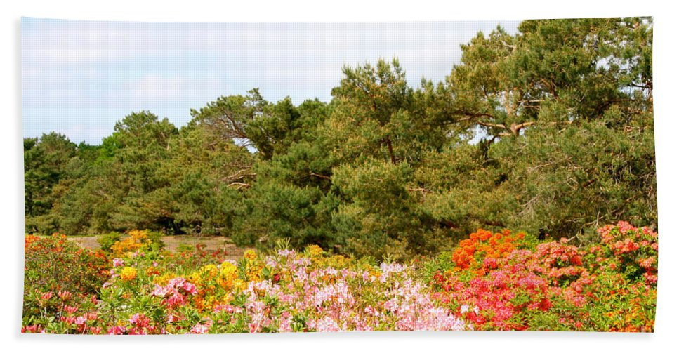 Flower Bath Sheet featuring the photograph Summer Scenes by Susan Herber