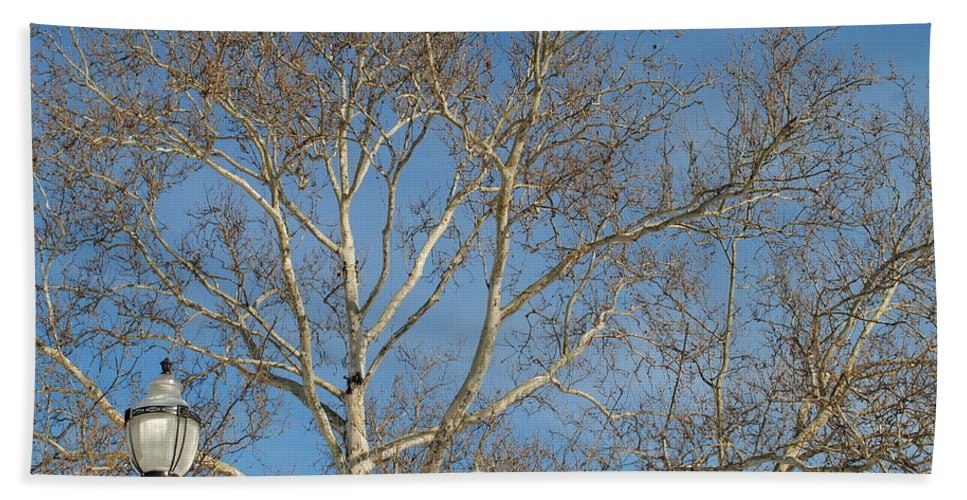 Lightpost Hand Towel featuring the photograph Summer Sky Winter Day by Frozen in Time Fine Art Photography