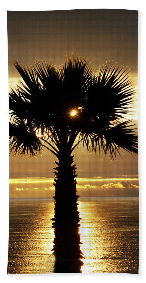 Royal Palms Bath Sheet featuring the photograph Sun And Palm And Sea by Joe Schofield