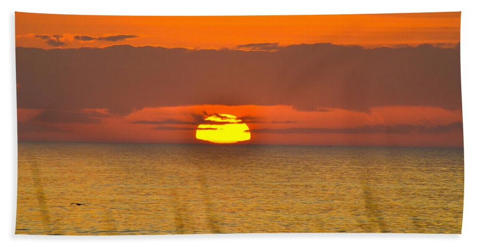 Beach Cottage Life Hand Towel featuring the photograph Sun Delight by Mary Hahn Ward