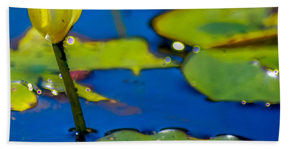 Optical Playground By Mp Ray Bath Towel featuring the photograph Sun Drenched Lilly by Optical Playground By MP Ray
