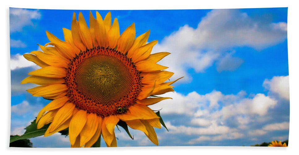 Sunflower Bath Sheet featuring the painting Sun On My Face by Lynne Jenkins