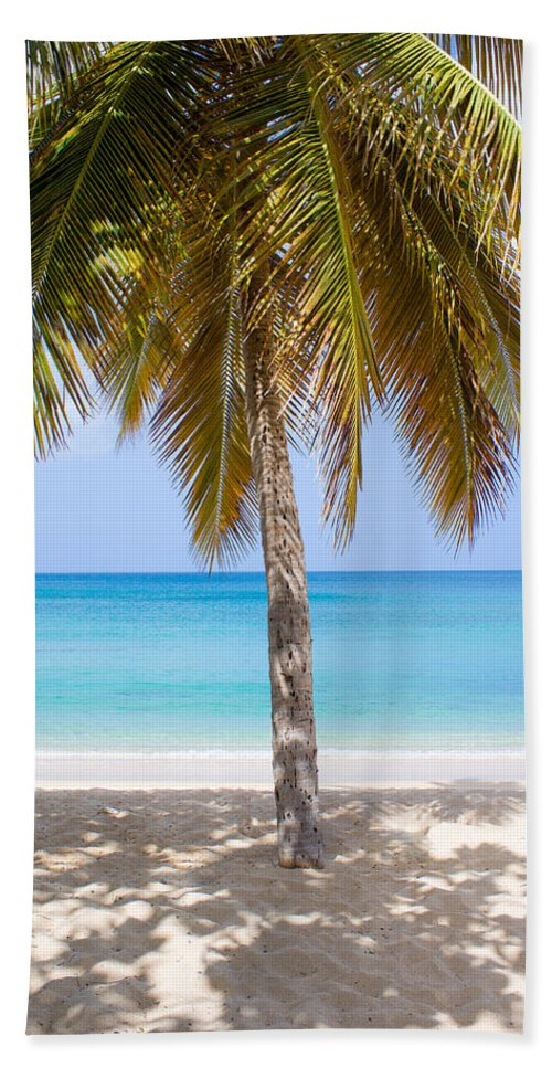 Antigua And Barbuda Bath Sheet featuring the photograph Sunday Palm by Ferry Zievinger