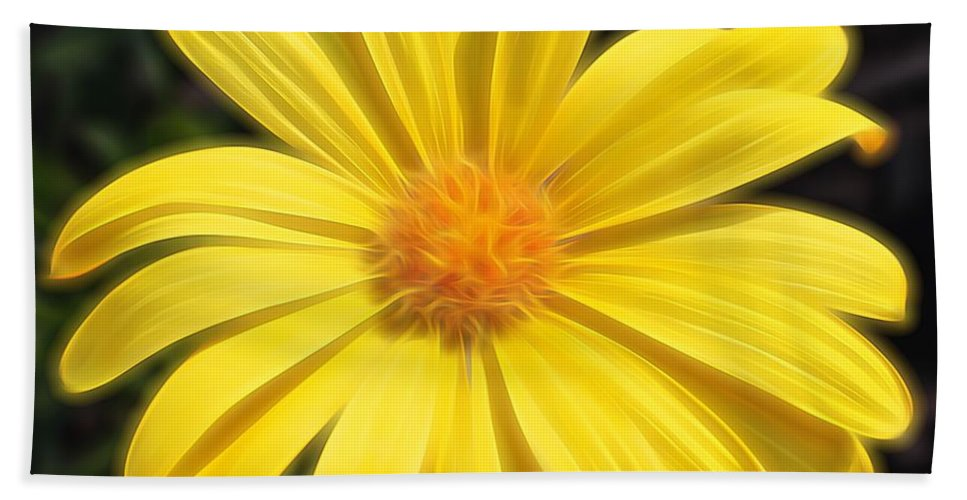 African Daisy Bath Sheet featuring the photograph Sunflare by Judy Vincent
