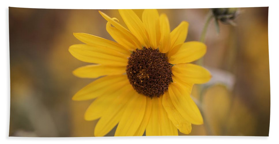 Sunflower Bath Sheet featuring the photograph Sunflower Closeup by Vishwanath Bhat