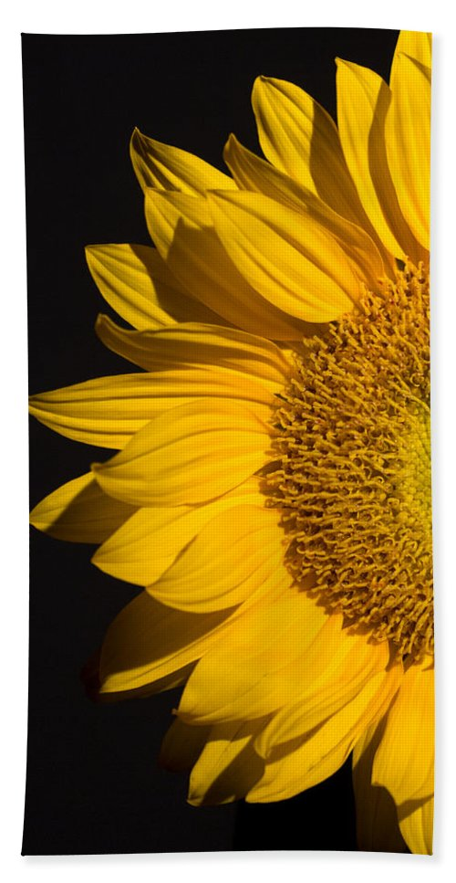 Sunflowers Bath Towel featuring the photograph Sunflower by Mark Ashkenazi