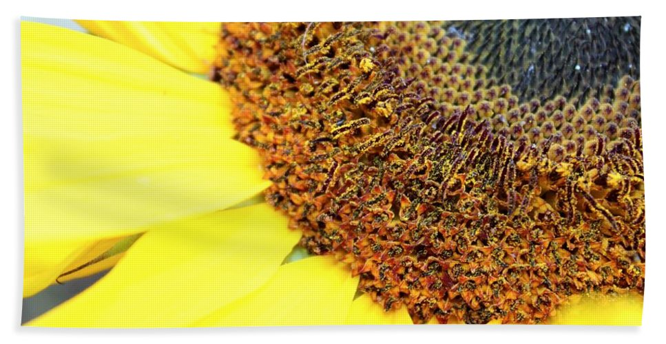 Orange Bath Sheet featuring the photograph Sunflower by Tiffany Erdman