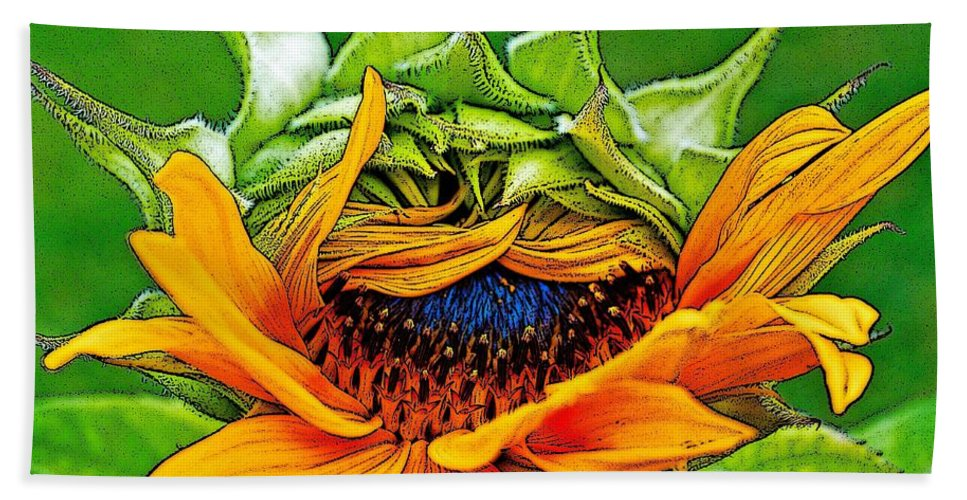 Sunflower Bath Sheet featuring the photograph Sunflower Volunteer Half Bloom by Gwyn Newcombe